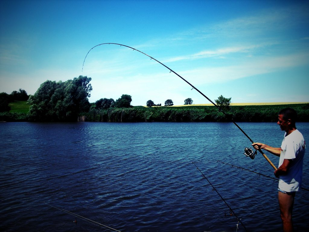 Provo River Fishing