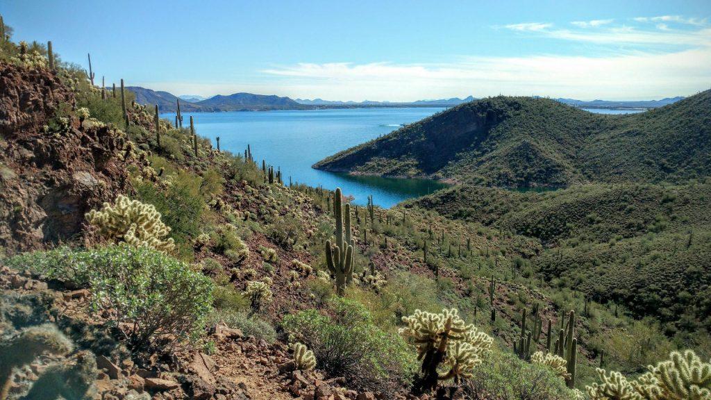 Big Lake Fishing Arizona