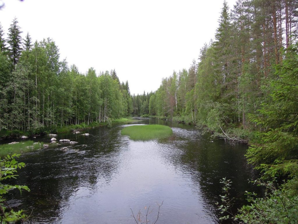 image of Eleven point River Fishing